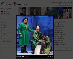IMM4-OperaVladarski-Website-Screenshot