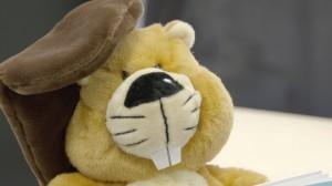 Gelbes Stofftier Biber, das Maskottchen des Wettbewerbs
